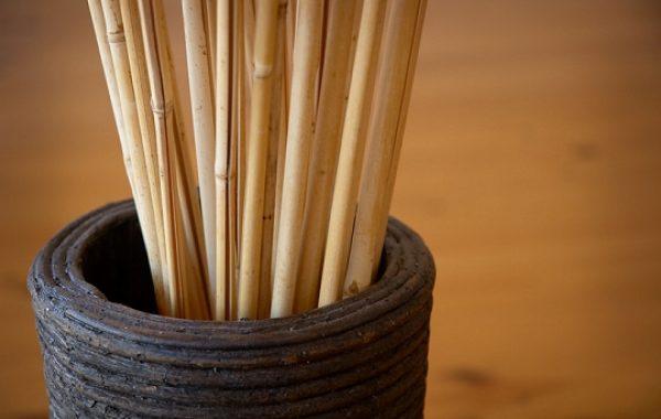 Bambus_element_1_540