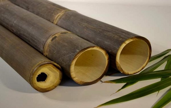Bambus_stokke_3_540