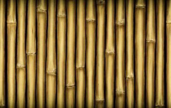 bambus_rullehegn_400