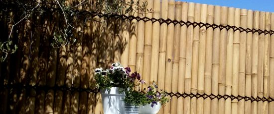 bambusvæg-halve-med-blomster.jpg